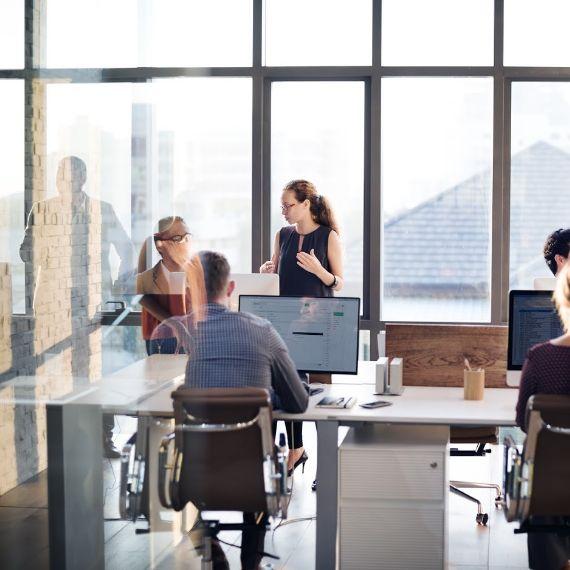 gestion de administracion de empresas
